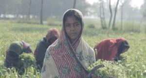 IR Bangladesh
