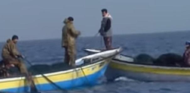 gaza fishing 2
