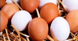eggs again